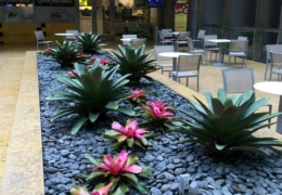 patioscaping-from-fosterplants-miami