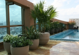 rooftop_terrace_garden_by_FosterPlants_miami