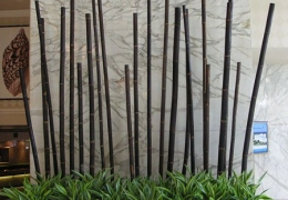 Live Plants with black Bamboo Poles