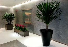FosterPlants_lobby_plant_service_miami