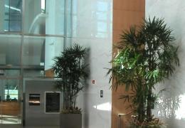 """Class """"A"""" Building Lobby"""