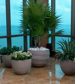 miami_rooftop_terrace_plants_1100_450