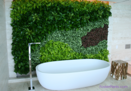 FosterPlants_living_wall_miami