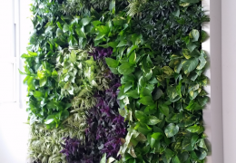 living-plant-wall-miami-FosterPlants